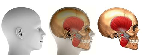 Oral and maxillofacial surgery lincoln county hospital jpg 1601x622